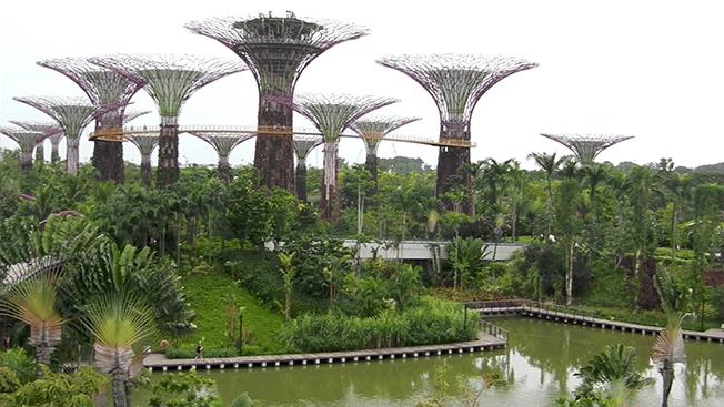 singapour vacances guide conseils pratiques pour