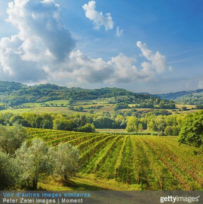 Tourisme rural en Italie : redonnez de l'intérêt à vos vacances