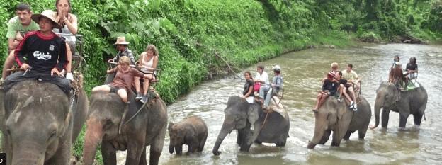 Tourisme responsable : voyager autrement